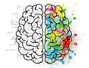 לימודי פסיכולוגיה