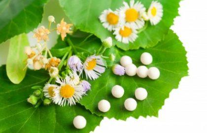 צמחי מרפא וההשפעות שלהם על חיינו