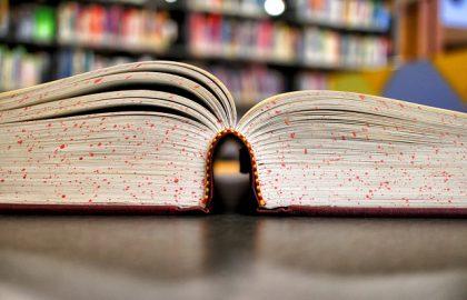 טיפים של ערן פול בשביל מי שמתלבט לגבי בחירת תחום הלימודים האקדמיים
